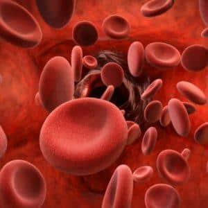 Antiplatelets, Bleeding Risks